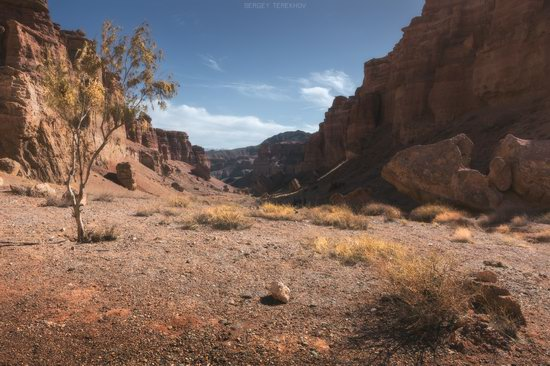 Valley of Castles in Charyn Canyon, Kazakhstan, photo 4