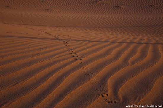 Senek Sands desert in the Mangystau region, Kazakhstan, photo 18