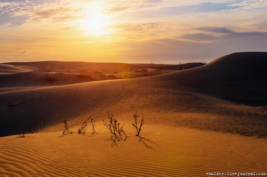 Senek Sands desert in the Mangystau region, Kazakhstan, photo 19