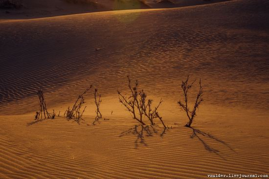 Senek Sands desert in the Mangystau region, Kazakhstan, photo 20