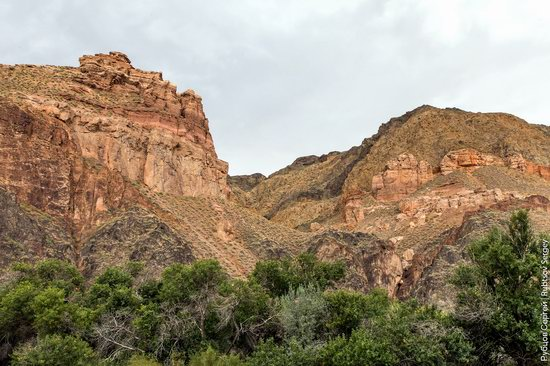 Charyn - the Grand Canyon of Kazakhstan, photo 27