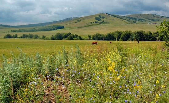 Picturesque Landscapes of the Karkaraly Mountains, Kazakhstan, photo 2