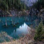 Sunken Forest of Lake Kaindy