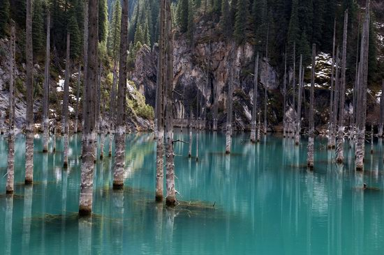 Sunken Forest of Lake Kaindy, Kazakhstan, photo 4