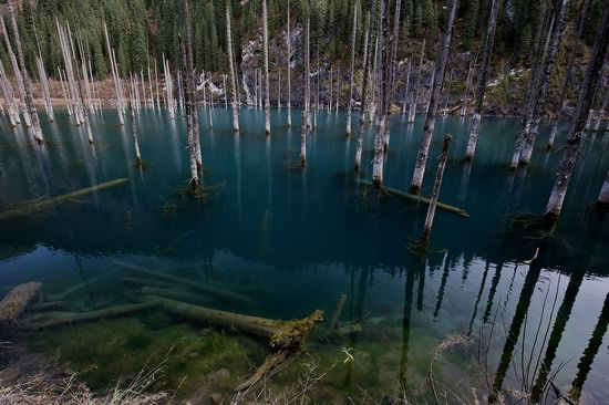 Sunken Forest of Lake Kaindy, Kazakhstan, photo 5