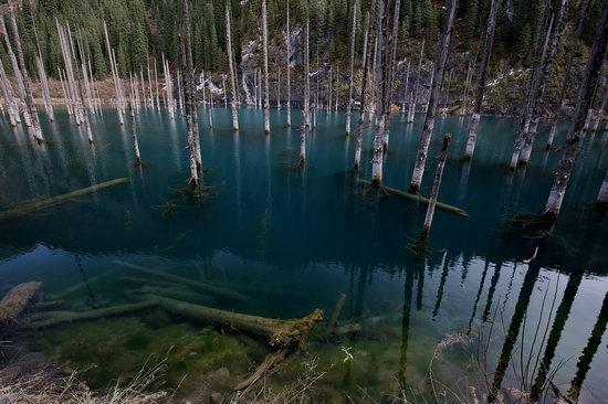 Sunken Forest of Lake Kaindy, Kazakhstan, photo 5