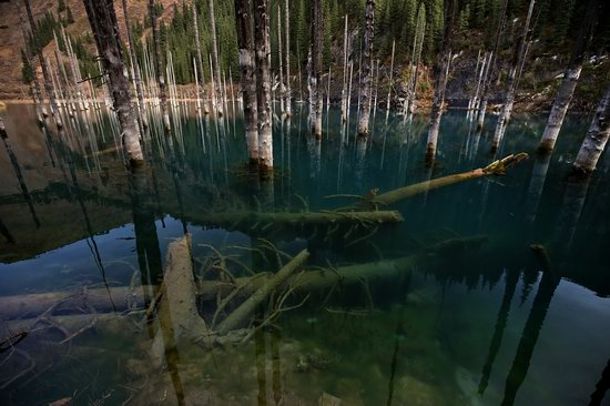 Sunken Forest of Lake Kaindy, Kazakhstan, photo 6