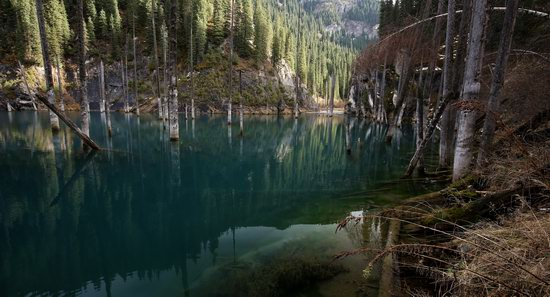 Sunken Forest of Lake Kaindy, Kazakhstan, photo 7