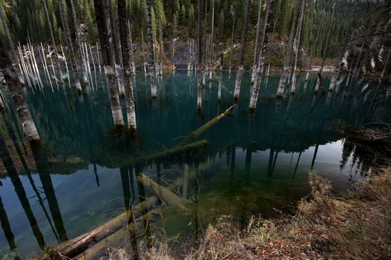 Sunken Forest of Lake Kaindy, Kazakhstan, photo 8
