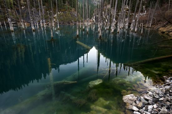 Sunken Forest of Lake Kaindy, Kazakhstan, photo 9