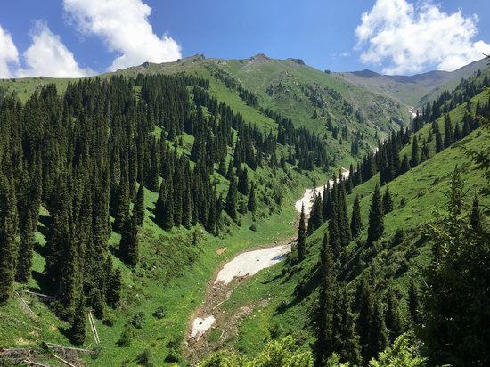 Hiking in Gorelnik Gorge, Kazakhstan, photo 15