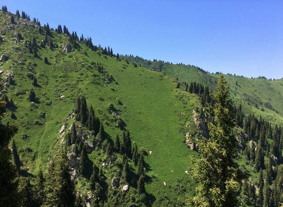 Hiking in Gorelnik Gorge, Kazakhstan, photo 6