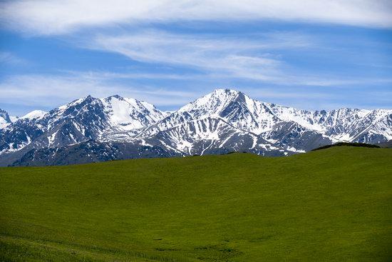 Summer in the Dzungarian Alatau, Kazakhstan, photo 7