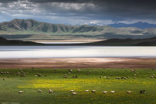 Tuzkol - the Saltiest Mountain Lake in Kazakhstan, photo 2