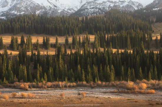 Autumn in the valley of the Tekes River, Almaty Oblast, Kazakhstan, photo 13