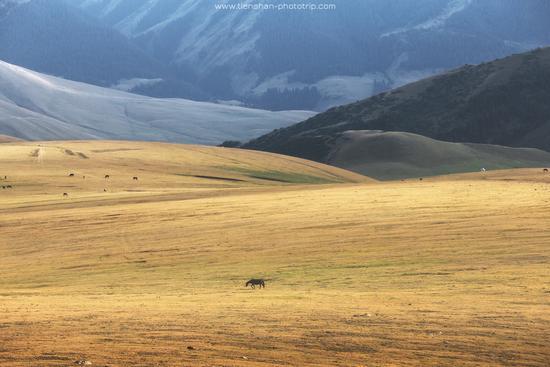 Breathtaking Landscapes of the Asy Plateau, Almaty Oblast, Kazakhstan, photo 4