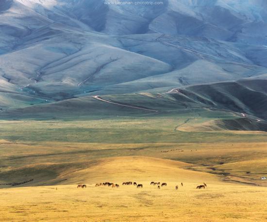 Breathtaking Landscapes of the Asy Plateau, Almaty Oblast, Kazakhstan, photo 5