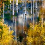Autumn on Lake Kaindy