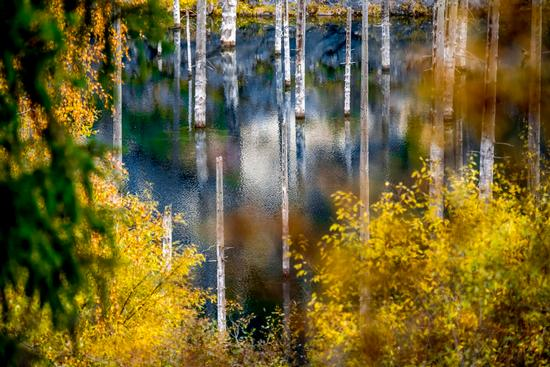 Autumn on Lake Kaindy, Almaty Oblast, Kazakhstan, photo 1