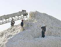 Kazakhstan agriculture cotton gathering
