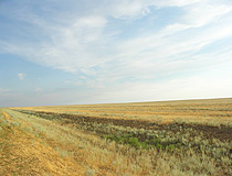 Kazakhstan steppe view